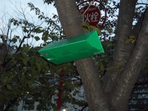 Hanging in the trees above our heads are small triangular, green plastic boxes. Perhaps 20cms long and open ended they look like something used for monitoring wildlife. the one in this picture catches the light from thr flash on my camera. Behind the tree