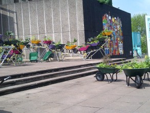 colourful wheelbarrows at the southbank