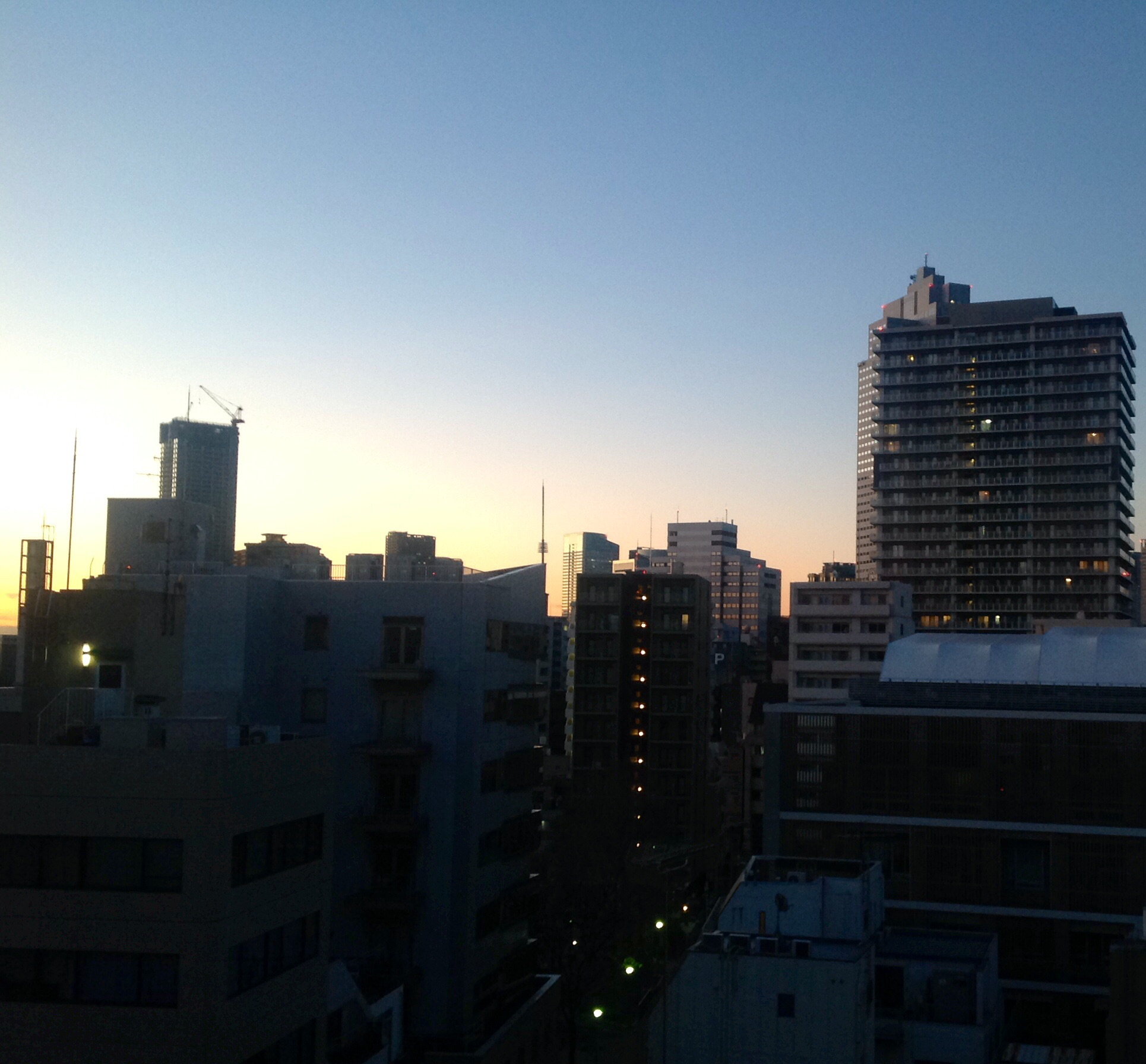 A pinky- blue dawn with a tiny bit of Tokyo skyline. The buildings have a few lights, but it's earlyand people are sleeping.