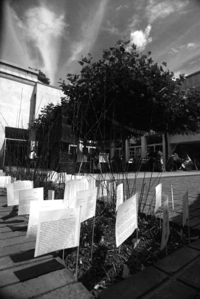 a black and white photo of a row of paper flags