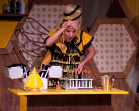 Review: Unlimited: Bee Detective by Tin Bath Theatre