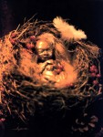 Early Days, Holding Promise  (Mixed media: bronze baby, birds nest, feathers and berries) by Nancy Willis