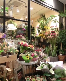 A peek into a well lit Japanese flower shop. Typically small with contents spilling outside,this one has posies of small sunflowers, red and pink roses and shades and textures of green giving a light and cheerful impression.