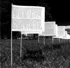 a black and white photograph of a field with flags made out of pages from books